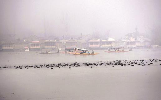 Tourists enjoy a boat ride on a foggy morning at Dal lake in Srinagar on Tuesday. ANI Photo