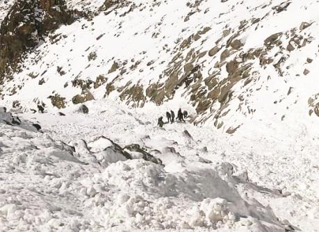 Search operation underway after an avalanche occurred in Khardung La, Ladakhon Friday. (ANI)