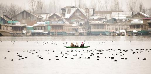 Women paddling a Shikara in Dal Lake, Srinagar on Sunday.Sheikh Faizan