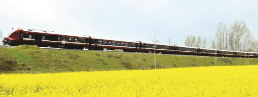 A train passes through mustered field in South Kashmir's Anantnag District. (Sheikh Faizan)
